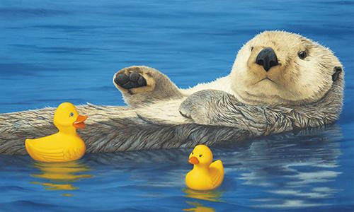Sea Otter with Ducks