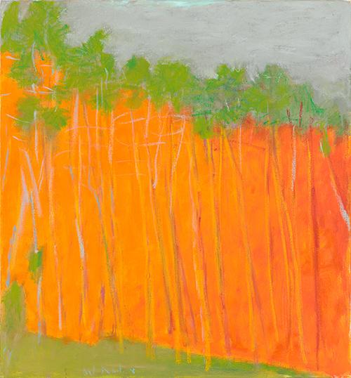 Bold Color, 2011