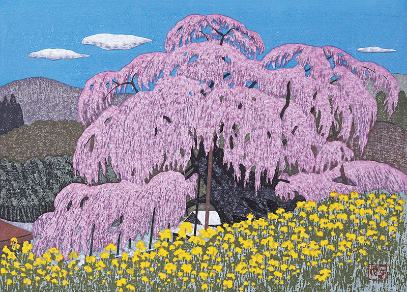 A Large Cherry Tree in Spring, 2002